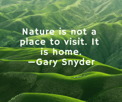 Gary Snyder nature quote