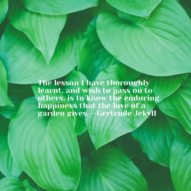 garden quote Gertrude Jekyll